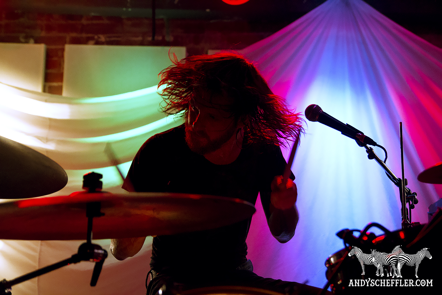 Photos two gallants will sprott electric owl april for 17th floor concert schedule